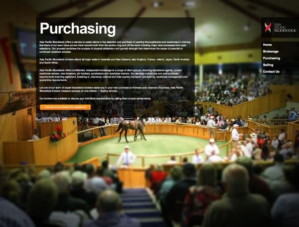 Asia Pacific Bloodstock - Purchasing