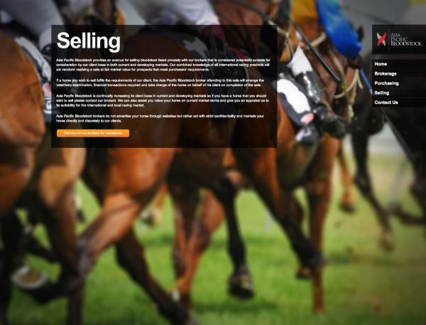 Asia Pacific Bloodstock - Selling